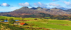 Moelwyn Mountains looking west from near Llan Festiniog with Moelwyn Bach on the left and Moelwyn Mawr in the centre, North Wales, UK, October 2019.  -  Alan Williams