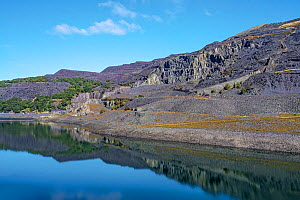 Dinorwic disused slate quarry viewed across Llyn Peris Reservoir, Llanberis, North Wales, UK, September 2019.  -  Alan Williams