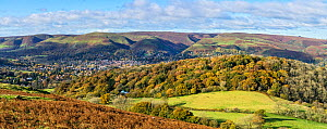 Helmeth Hill wood with Church Stretton below the Long Mynd hills behind viewed from Hope Bowdler Hill Shropshire, UK, November 2019.  -  Alan Williams