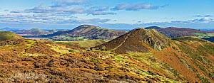 View looking north east on the Long Mynd with Bodbury Hill on the right and Caer Caradoc Hill and The Lawley in the background Shropshire, UK November 2019.  -  Alan Williams