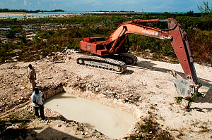 Men at a construction site in a mangrove area in The Bahamas. The site will become a restaurant, night club and small hotel. December 2015.  -  Shane Gross
