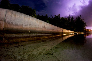 Cement seawall during a lightning storm, The Bahamas. Seawalls that replace mangroves do a worse job at protecting islands, are far more expensive, and don't offer the ecological benefits of mangr...  -  Shane Gross