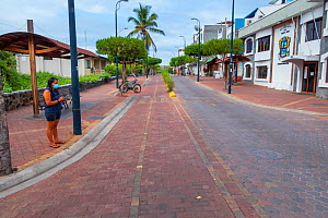 Puerto Ayora, during Covid-19 lockdown, deserted main street and park, normally crowded with tourists and locals, Santa Cruz Island, Galapagos Islands April 2020  -  Tui De Roy