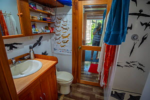 Fibreglass shower decorated with decals of photographer Tui De Roy's images. Taken during the Covid-19 lockdown, in Tui De Roy's tiny house consisting of three 20ft shipping containers. Santa...  -  Tui De Roy