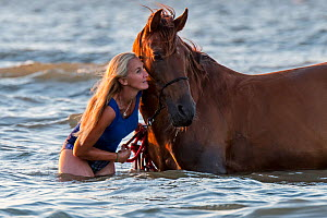 Horsewoman / female horse rider bathing / paddling with horse in shallow water on the beach in summer along the North Sea coast, Belgium. Model released  -  Philippe Clement