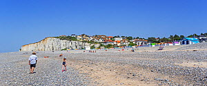 Sunbathers and colourful beach cabins on shingle beach / pebble beach at Criel-sur-Mer in summer, Seine-Maritime, Normandy, France, June 2019  -  Philippe Clement