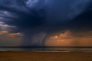 Thunderstorm with dark rain clouds and cloudburst / deluge over the sea during heatwave in summer, Belgium, July  -  Philippe Clement