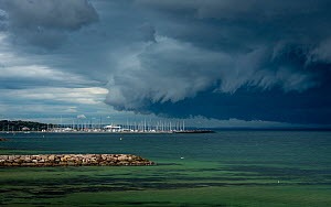 Storm clouds above Sandringham yacht club (in Port Philip Bay). Sandringham, Victoria, Australia. May 2020.  -  Doug Gimesy