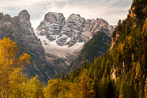 The Three Peaks and Monte Cristallo with autumn trees. Dolomites, Italy, October 2019.  -  John Shaw