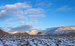 Landscape of the High Mournes, Mourne Mountains, County Down, Ireland. January 2015.  -  Robert  Thompson