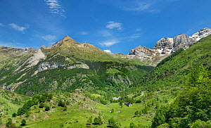 View from the Col de Tentes road, Pyrenees National Park, France, June.  -  Robert  Thompson