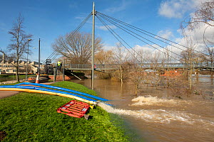 Floodwater being pumped by the Environment Agency from a road into the River Severn, Worcester, England, UK. February 2020.  -  Will Watson