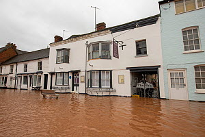 Flooded Teme Street and the Shipp Inn, Storm Dennis, Tenbury Wells, Worcestershire, England, UK. February 2020.  -  Will Watson