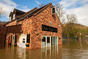 Cafe flooded after Storm Dennis, Coalbrookdale, Ironbridge, Shropshire, England, UK. February 2020.  -  Will Watson