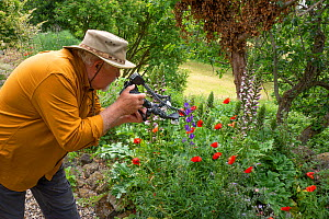 Photographer Paul Harcourt Davies taking photographs of flowers in the garden of his home. Podere Montecucco, Umbria, Italy, June 2020.  -  Paul  Harcourt Davies
