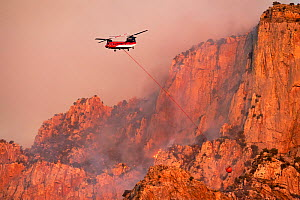 Lightning started fire on steep craggy terrain, with US Forest Service Fire suppression Wildland Firefighters using helicopters to 'bomb' the hot spots to control the spread. Pusch Ridge, Sant...  -  Jack Dykinga