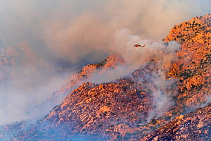 Lightning caused fire on Mount Lemmon, Forest Service Fire suppression Wildland Firefighters use helicopters to 'bomb' the hot spots to control the spread. Mount Lemmon's north palisades,...  -  Jack Dykinga