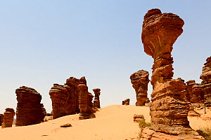 Eroded sandstone rock formations in the Sahara desert, Ennedi Natural And Cultural Reserve, UNESCO World Heritage Site, Chad. September 2019.  -  Enrique Lopez-Tapia