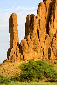 Sandstone rock formations in the Sahara desert. Ennedi Natural and Cultural Reserve, UNESCO World Heritage Site, Chad. September 2019.  -  Enrique Lopez-Tapia