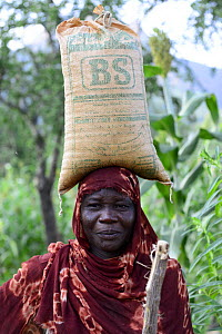 Hadjarai woman, carrying a large sack balanced on head, Moukoulou village. South Chad. September 2019.  -  Enrique Lopez-Tapia