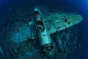 Jake Seaplane, a popular scuba dive site and war relic, sank in World War II. Palau, Pacific Ocean.  -  Brandon Cole