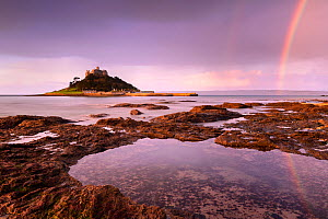 St Michael's Mount at sunrise with a rainbow over Penzance, Marazion, Wesat Cornwall, UK. February.  -  Ross Hoddinott