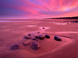 Westward Ho! beach at sunrise, colourful sky at low tide and tidal pool, north Devon, UK. February.  -  Ross Hoddinott