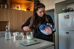 Emily Small, founder of Goongerah Wombat Orphanage, wildlife rescuer and carer, making up a wombat feed supplement in the kitchen of her Melbourne inner-city apartment, holding 'Bronson', an o...  -  Doug Gimesy