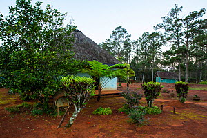 Facilities at biological station in Cupeyal del Norte sector, Humboldt National Park, Cuba. March 2019.  -  Bruno D'Amicis