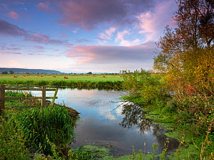 Drainage ditch fields and hay bales at sunrise, near Greylake, Somerset Levels and Moors, Somerset, England, UK, August 2019  -  Mike Read