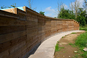 A wooden artificial sand martin bank and bat roost at the East Devon Axe Estuary Wetlands Nature Reserve near Seaton in Devon  -  Nigel Cattlin