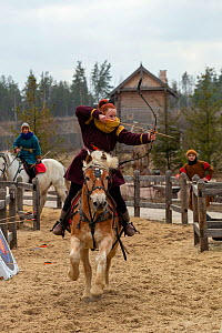 Archer aiming arrow whilst mounted on cantering Haflinger horse. Kievan Rus Park, a reconstruction of the former capital Rus. Ukraine, 2020.  -  Kristel Richard