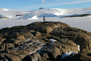 Scientist surveying Snow petrel nests around islands near Mawson station, Antarctica, 2004  -  Fred Olivier