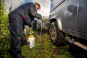 Tyres of a Land Rover used for transporting equipment for trapping and vaccinating European badgers (Meles meles) against TB are sprayed with disinfectant. North Somerset, UK. Badger vaccination progr...  -  Neil Aldridge