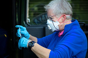 A vaccinator prepares a syringe before vaccinating a European badger (Meles meles) against TB. North Somerset, UK. . Badger vaccination programmes are being carried out in England as a means of contro...  -  Neil Aldridge