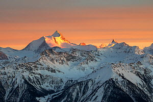 Mountain peaks Weisshorn, Grand Gendarme, Zinalrothorn and other peaks in the Bernese Alps, Switzerland, March 2019.  -  David Pattyn