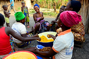 Holi tribeswomen cooking fried corn balls, children eating them in background. Benin. 2020.  -  Enrique Lopez-Tapia