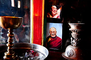 Lamps and photo of Dalai Lama in Karsha Gompa, a Buddhist monastery founded in the 10th Century. At altitude of 3650m. Padum Valley, Zanskar, Ladakh, India. 2011.  -  Enrique Lopez-Tapia