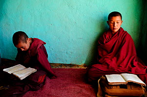 Two young novices studying in small school of the Karsha Gompa, a Buddhist monastery at 3650m altitude founded in the 10th Century. Padum Valley, Zanskar, Ladakh, India. 2011.  -  Enrique Lopez-Tapia