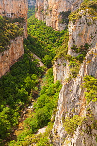 Arbaiun Gorge in summer with trees in full leaf. Foz de Arbayun Natural Park, Salazar Valley, Navarre, Spain. June 2014. Sequence 1/4.  -  Eduardo Blanco