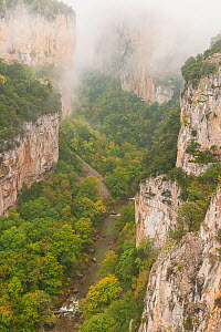 Arbaiun Gorge in early autumn with mist, leaves starting to turn colour. Foz de Arbayun Natural Park, Salazar Valley, Navarre, Spain. November 2003. Sequence 2/4.  -  Eduardo Blanco