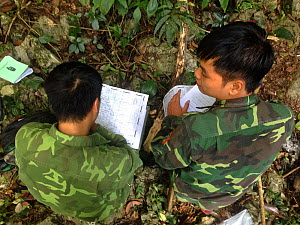 FFI staff and local ranger during 2018 Cao vit gibbon census. Cao vit gibbon Species & Habitat Conservation Area, Trung Khanh district, Cao Bang province, Vietnam. EDITORIAL USE ONLY. All uses require...  -  Cong Anh / Fauna & Flora International