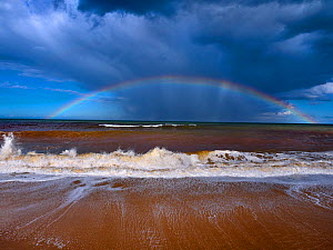 Autumn high tides with stormy skies and rainbow over the sea, Walcott, Norfolk, England, UK, September.  -  Ernie Janes