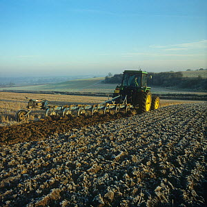 Tractor with a non-reversible, 7 coulter Ransome plough, ploughing stubble through the frost on a cold autumn morning, Hampshire, England, UK. November,  -  Nigel Cattlin