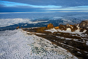 Aerial view of ice surrounding Franz Jozef Land, Arctic Russia. July 2019  -  Sergey  Gorshkov