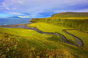 Tundra and estuary, Onekotan Island, Kuril Islands, Russia. Makanrushi Island, which is northwest of Onekotan Island, can be seen in the distance. A volcanically and seismically active island, Onekota...  -  Jenny E. Ross