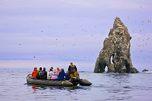 Ecotourists view a seabird colony on off-shore rocks in the Bering Sea near Verkhoturova Island, Russia. The nesting species include common and Brunnich's guillemots (Uria aalge and Uria lomvia ar...  -  Jenny E. Ross
