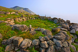 Remains of an ancient Chukchi village site at Cape Dezhnev, Chukotka, Siberia, Russia. August.  -  Jenny E. Ross