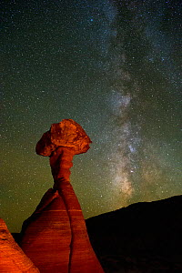 Night skies and Milky Way over Toadstools or Hoodoos in the Grand Staircase-Escalante National Monument, Utah, USA, October 2016.  -  Jeff Vanuga