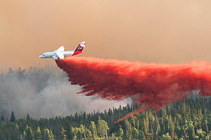 Fire fighting activities with fixed wind aircraft dropping fire retardant on the Lava Mountain Fire, Wyoming, USA. July 2016  -  Jeff Vanuga